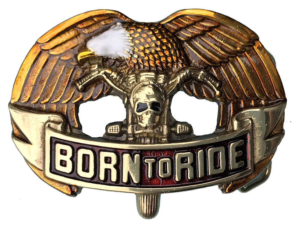 Born to Ride Coloured